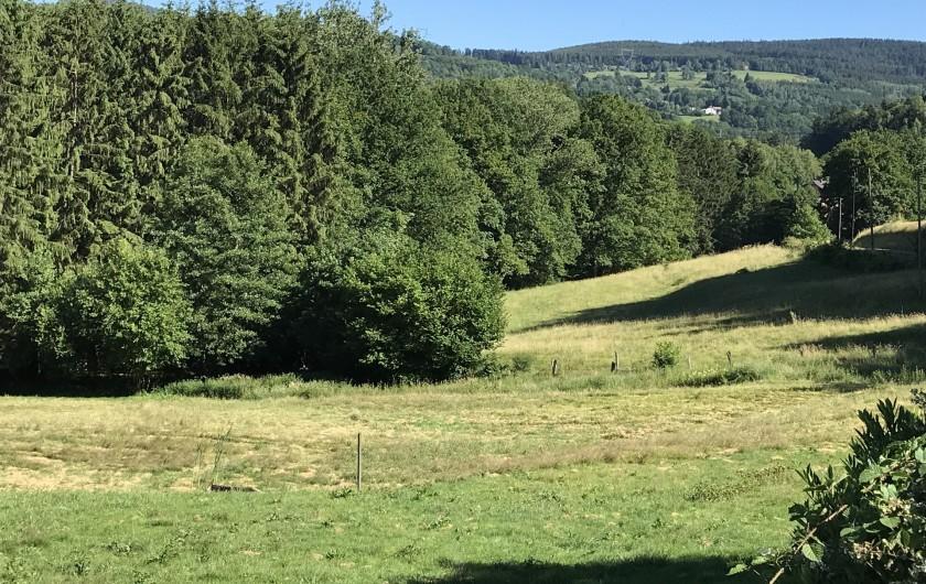 Location de vacances - Chalet à Anould - VUE EN ETE