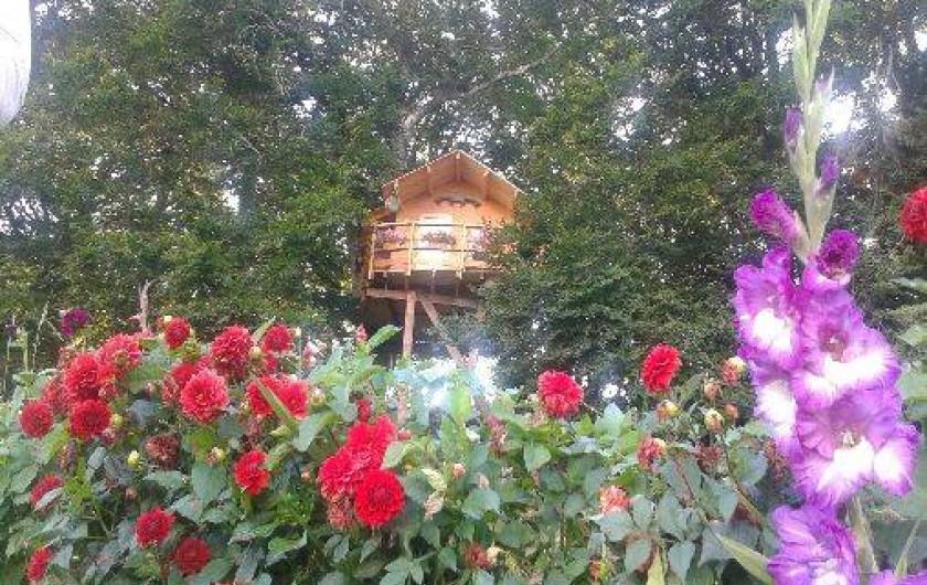 Location de vacances - Cabane dans les arbres à Paulhac-en-Margeride - Cabane calme et reposante