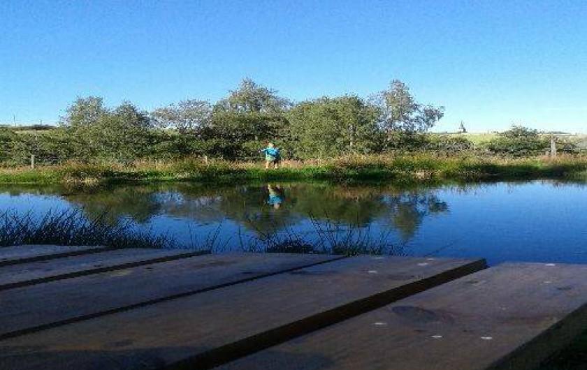 Location de vacances - Cabane dans les arbres à Paulhac-en-Margeride - Lieu de reproduction de batraciens et autres espèces. lieu préservé.