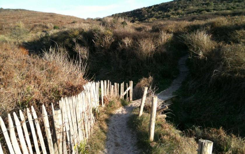 Location de vacances - Gîte à Barneville-Carteret - Chemin dans les dunes