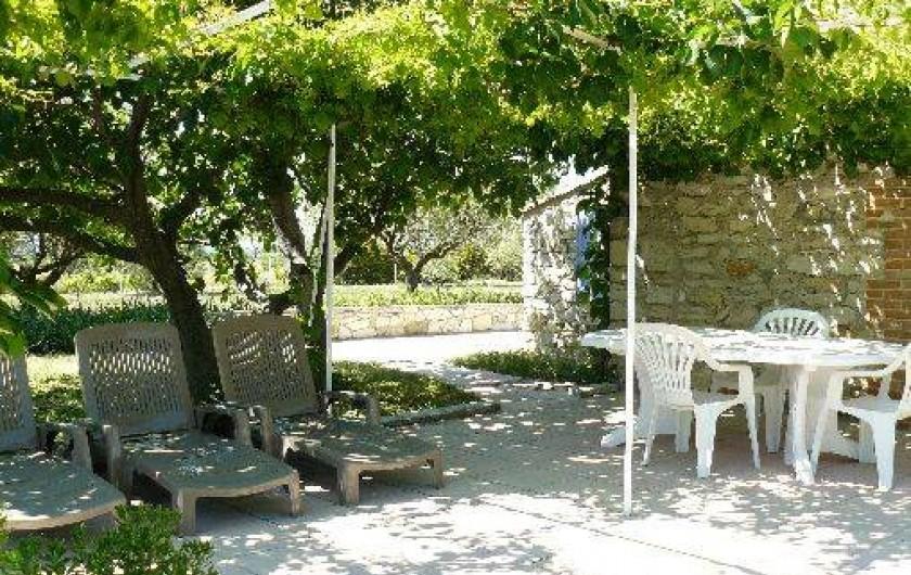 Location de vacances - Gîte à Saint-Jean-de-Serres - Pergola dans l'ombre du figuier et de la vigne vierge