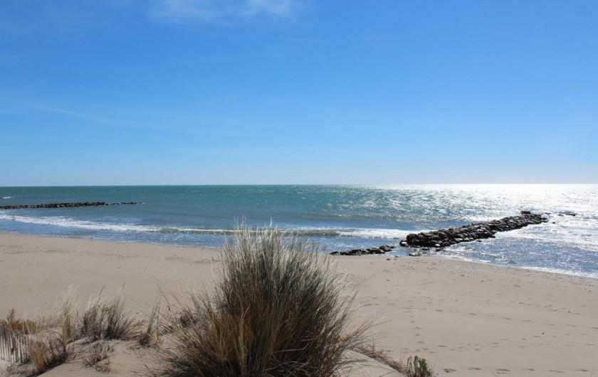 Location de vacances - Gîte à Arles - Les plages sauvages de Camargue