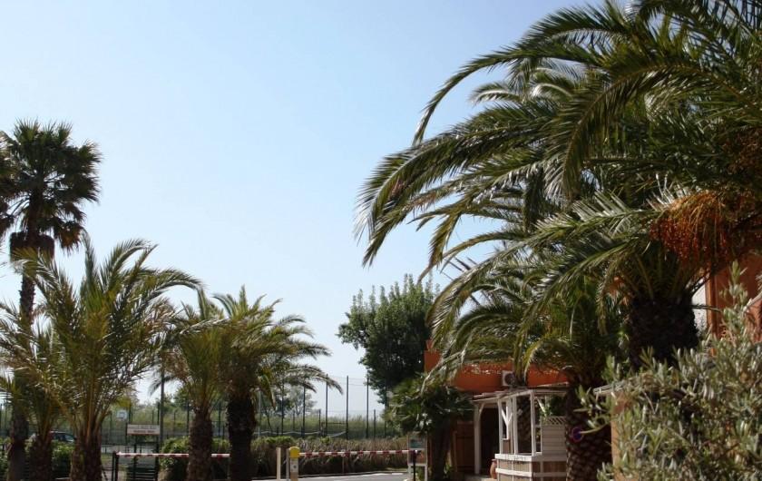 Location de vacances - Camping à Le Barcarès - Une nouvelle entrée pour la saison 2016 !