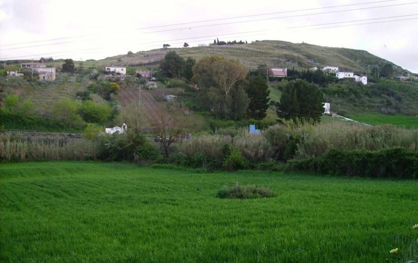 Location de vacances - Villa à Calatafimi - un champ de blé sur la propriété