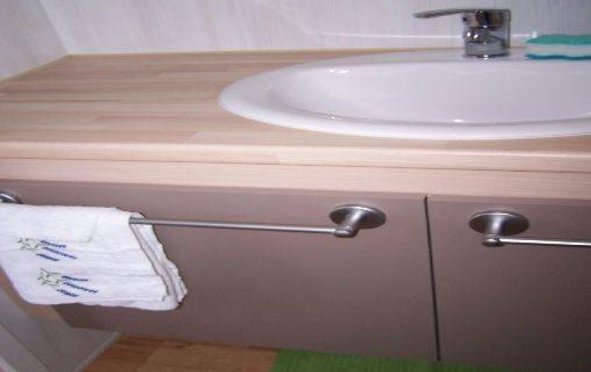 Location de vacances - Bungalow - Mobilhome à Saint-Denis-d'Oléron - lavabo dans salle d'eau