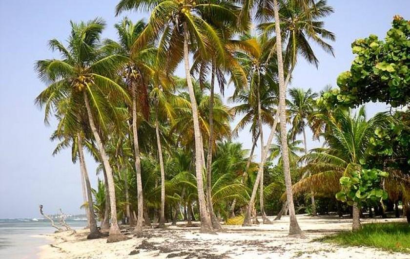 Location de vacances - Bungalow - Mobilhome à Sainte-Anne - Plage Bois Jolan