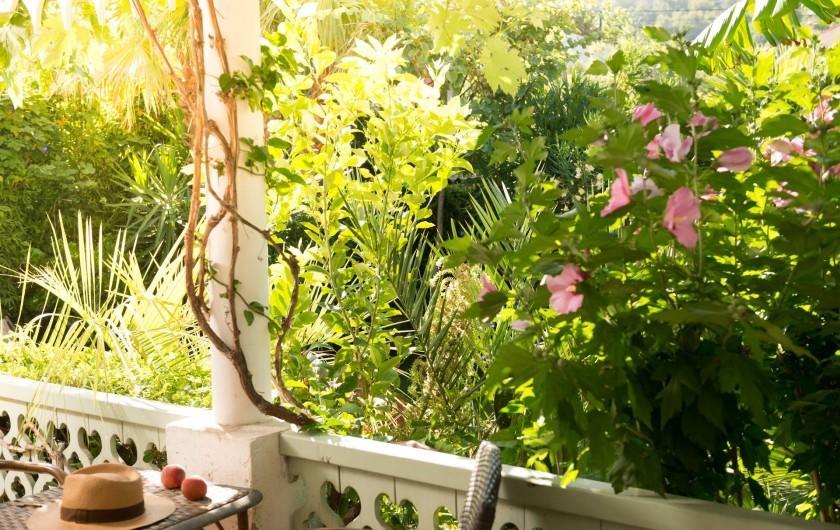 Location de vacances - Chambre d'hôtes à Marseille - le jardin exotique de la maison d'hôtes dans les calanques de marseille