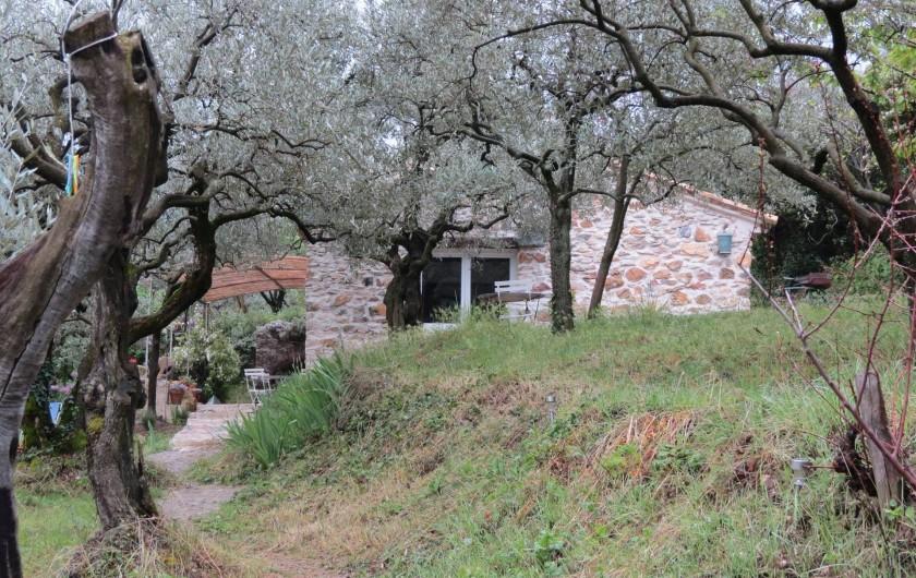 Location de vacances - Villa à Nyons - le cabanon dans les oliviers.