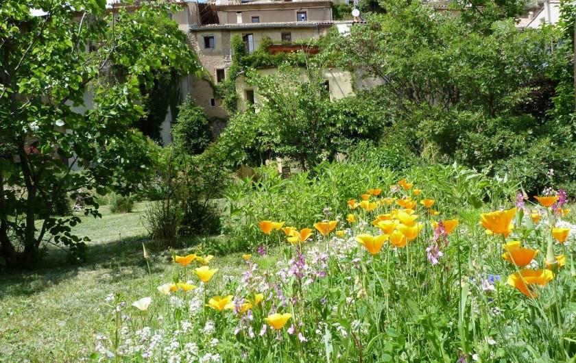 Location de vacances - Gîte à Mollans-sur-Ouvèze - Le jardin fleuri en été