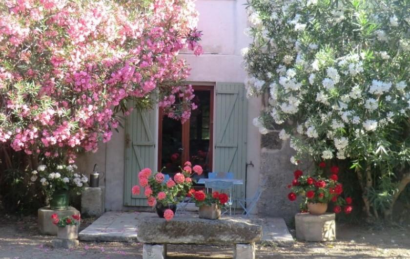 Location de vacances - Appartement à Saint-Gilles - terrasse côté sud coeur du mas