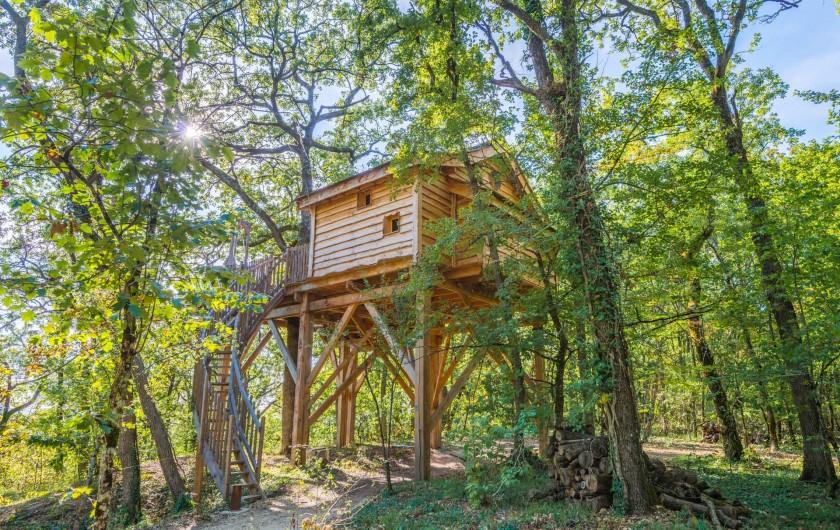 Location de vacances - Cabane dans les arbres à Clairac - Votre cabane de luxe perchée dans les arbres avec jaccuzi privatif