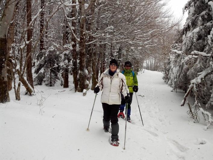 Location de vacances - Gîte à Le Soulié - L'hiver aussi on randonne !!