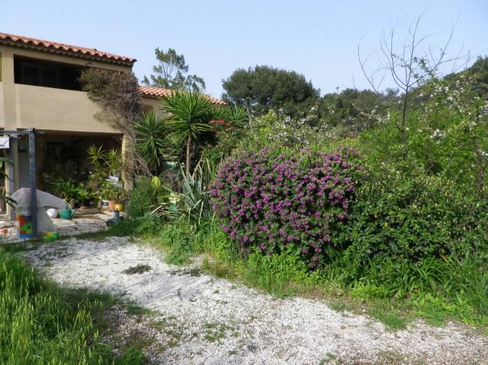 Location de vacances - Villa à Hyères - jardin de la maison