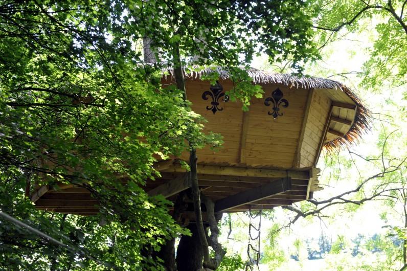"""Location de vacances - Cabane dans les arbres à Saint-Germain-des-Essourts - Cabane """"Soleil Royal"""""""