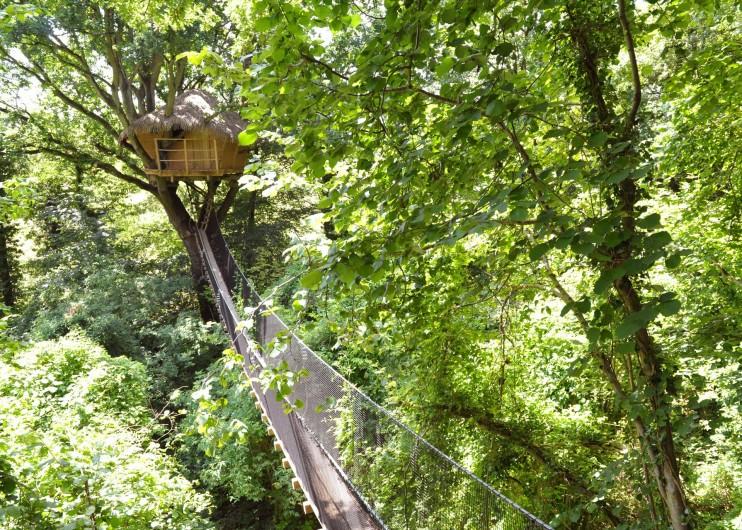 """Location de vacances - Cabane dans les arbres à Saint-Germain-des-Essourts - Cabane """"Vieux Chêne"""""""