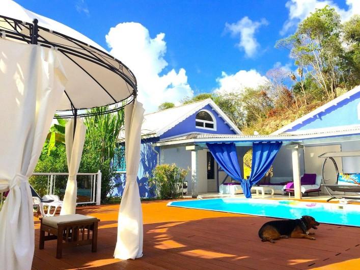Location de vacances - Chambre d'hôtes à Le Gosier - Piscine à tout heures de la journée et du soir sans limite