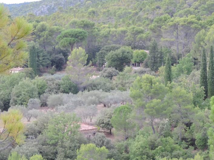 Location de vacances - Villa à Villecroze - LA CAMPAGNE ENVIRONNANTE