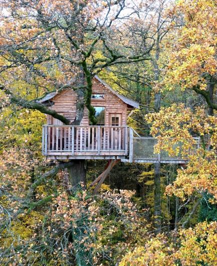 Location de vacances - Cabane dans les arbres à Signy-l'Abbaye - La héronnière, 13 mètres vu de drone