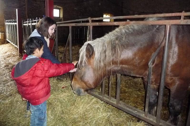 Location de vacances - Gîte à Sorans-lès-Breurey - Animaux sur place à la ferme bio de They