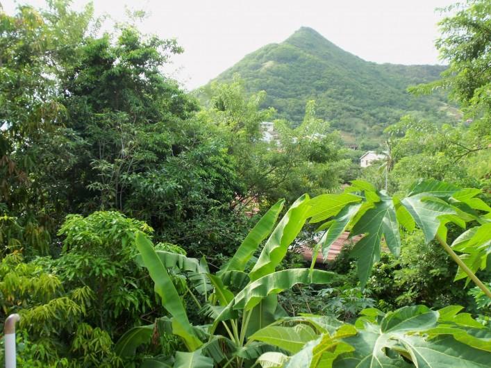 Location de vacances - Appartement à Les Anses-d'Arlet - Vue du deck