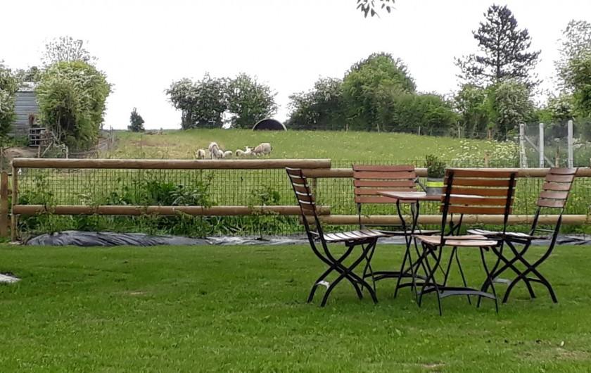 Location de vacances - Gîte à Liesville-sur-Douve - PETITE TABLE SUR LA PELOUSE AVEC VUE SUR LES ANIMAUX
