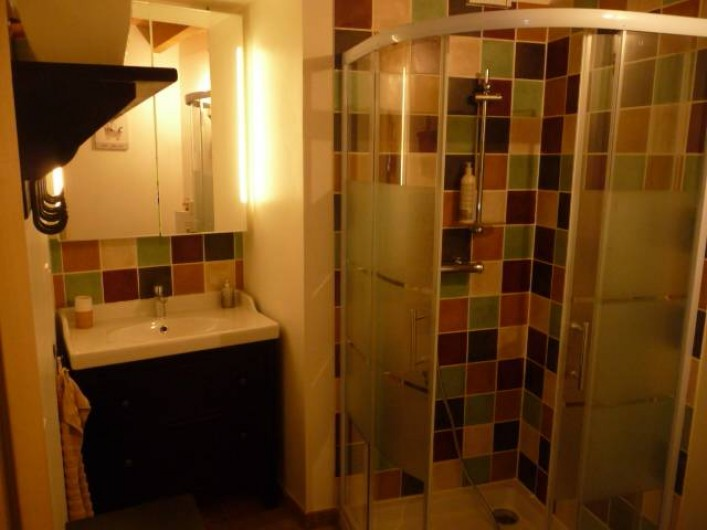 Location de vacances - Gîte à Vienne - salle d'eau