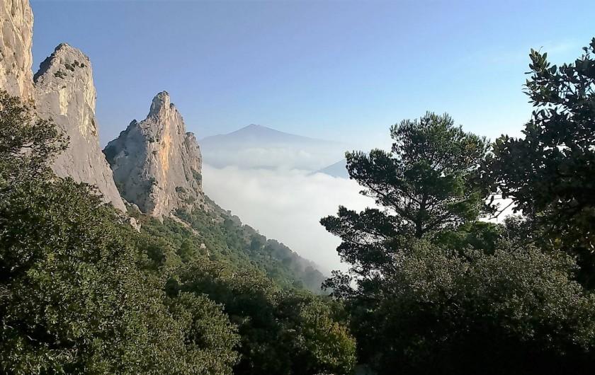 Location de vacances - Gîte à Lafare - Les Dentelles et le Mont Ventoux