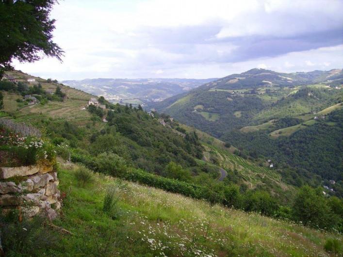 Location de vacances - Gîte à Florentin-la-Capelle - Vue sur les vignes de la vallée du Lot (Le Fel)