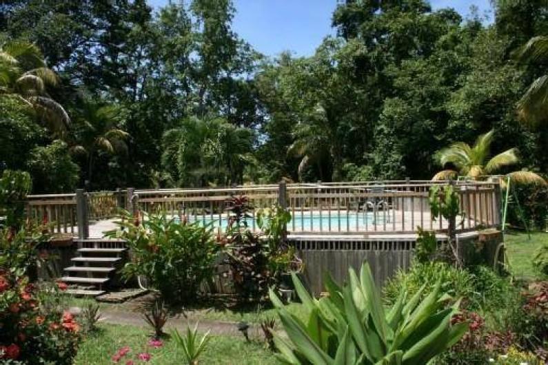 Location de vacances - Villa à Deshaies - La piscine