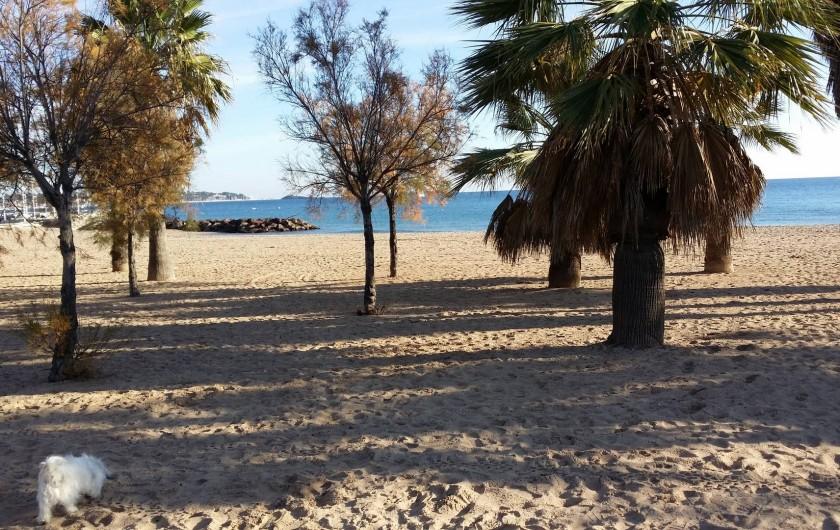 Location de vacances - Appartement à Fréjus Plage - plage frejus coté base nature a 500m