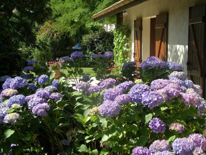 Location de vacances - Villa à Sanguinet - les hortensias