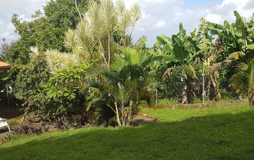 Location de vacances - Villa à Le Lamentin - jardin devant la maison