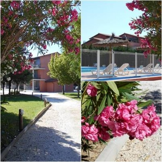 Location de vacances - Appartement à Alénya - Vue de l'ensemble avec piscine