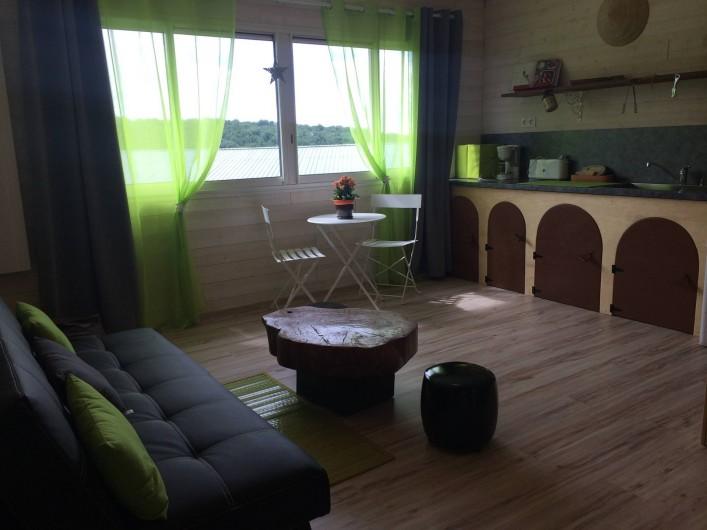 Location de vacances - Insolite à Saint-Barthélémy-d'Agenais - Salon avec cuisine équipé et clic clac deux places