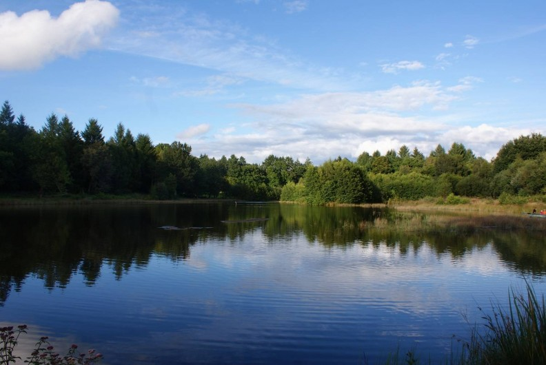 Location de vacances - Insolite à Sainte-Fortunade - L'étang