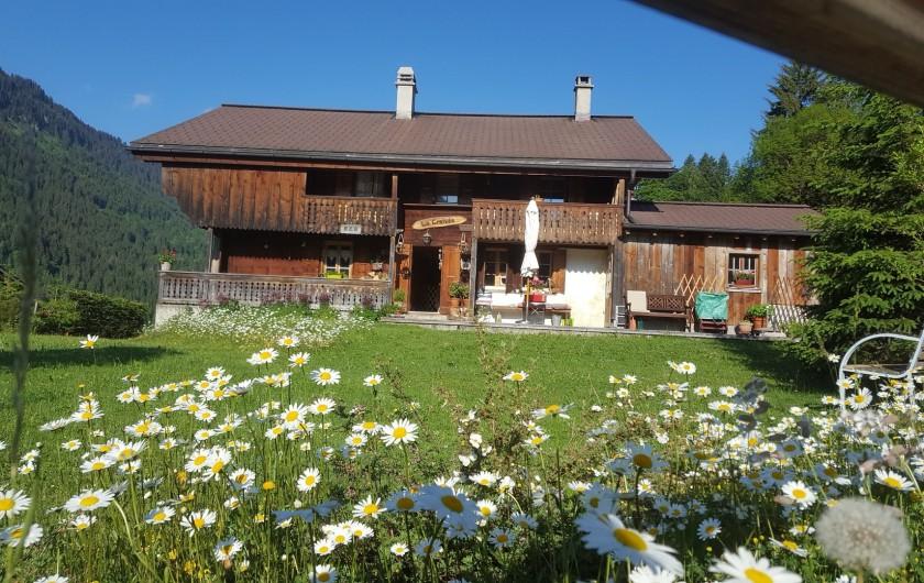 Location de vacances - Chalet à Les Diablerets - Jardin au printemps