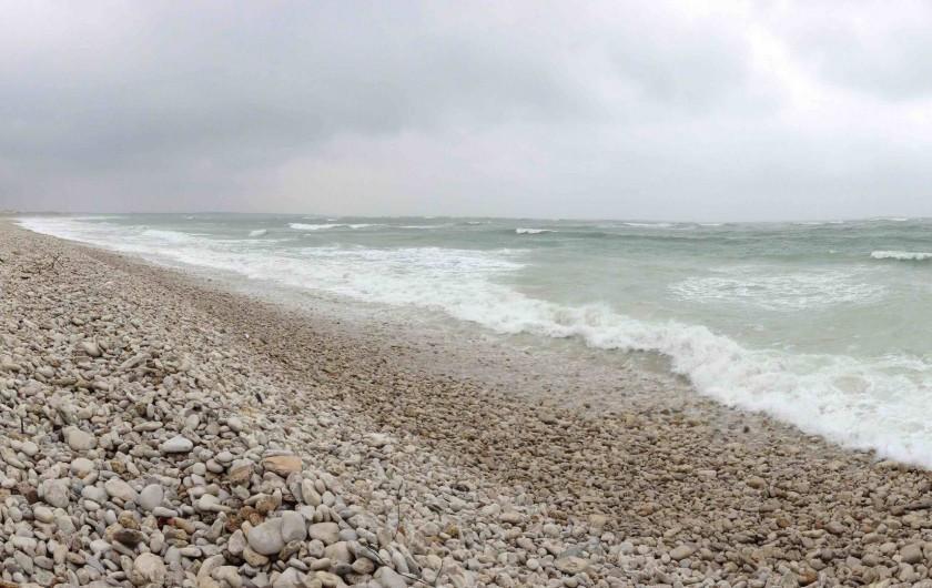 Location de vacances - Villa à Saint-Denis-d'Oléron - La mer plus sauvage