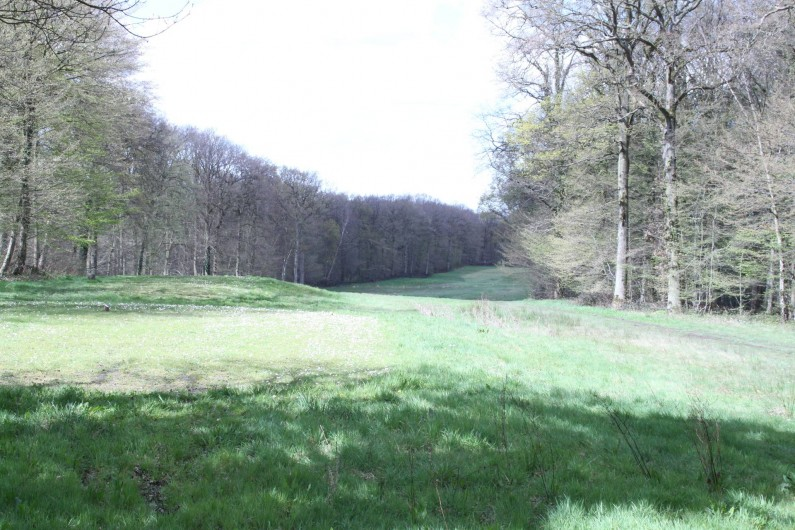 Location de vacances - Chalet à Ruminghem - fairway du golf