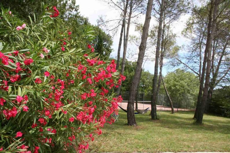 Location de vacances - Mas à Goudargues - Jardin avec Tennis
