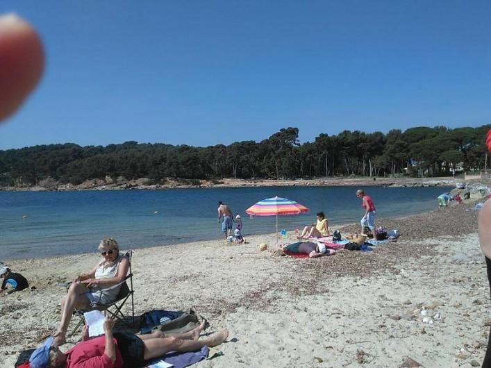 Location de vacances - Appartement à Saint-Mandrier-sur-Mer - la plage (à 250 m)