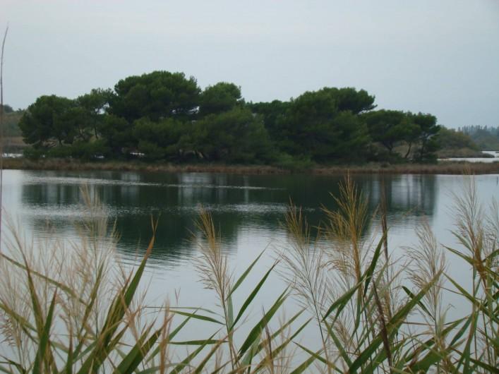 Location de vacances - Bungalow - Mobilhome à Saint-Aygulf - Pour les amateurs de pêche sur l'étang de Villepey (réserve naturelle)