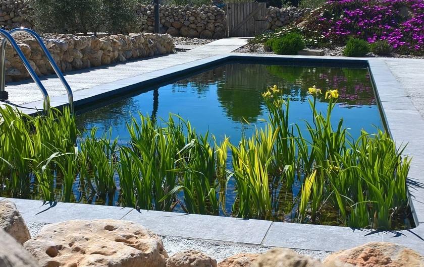 Location de vacances - Gîte à Fitou - piscine écologique