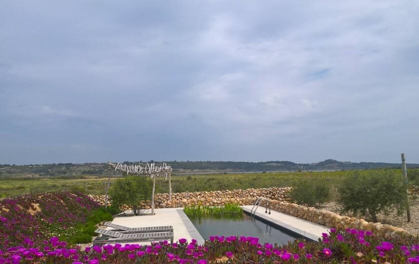 Location de vacances - Gîte à Fitou - piscine avec hamacs