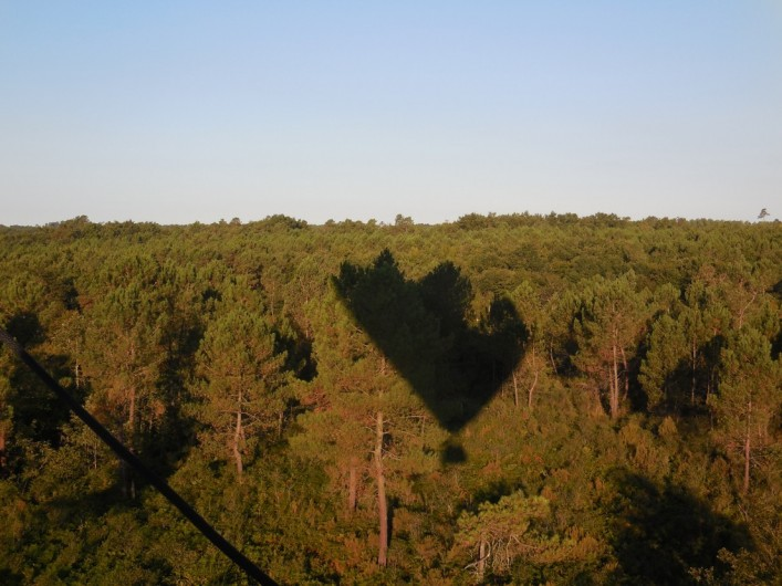 Location de vacances - Chambre d'hôtes à Laruscade - Survol de la forêt