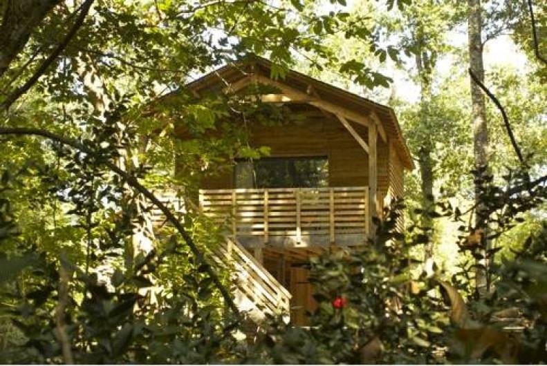 Location de vacances - Insolite à Saint-Georges-des-Sept-Voies - ECOLODGE DE LOIRE  CABANE DANS LES ARBRES SAUMUR.  SPA, SAUNA, JACCUZI, MASSAGE