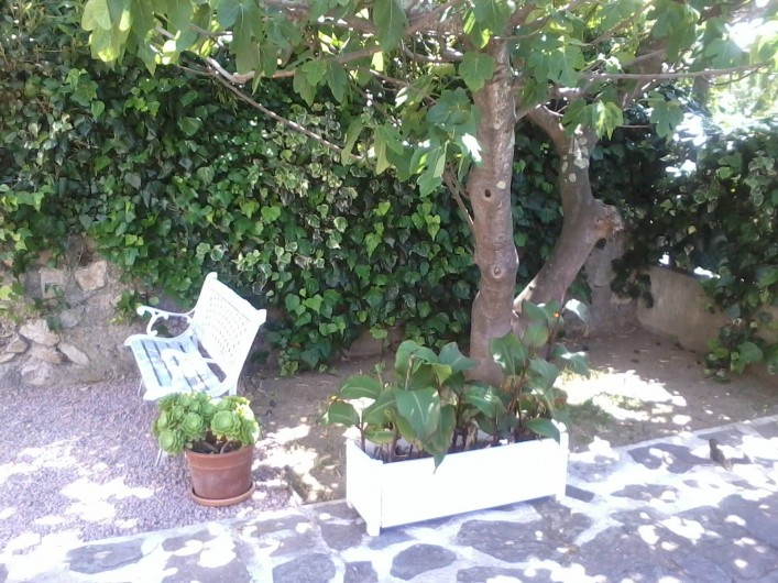 Location de vacances - Appartement à Saint-Tropez - jardin