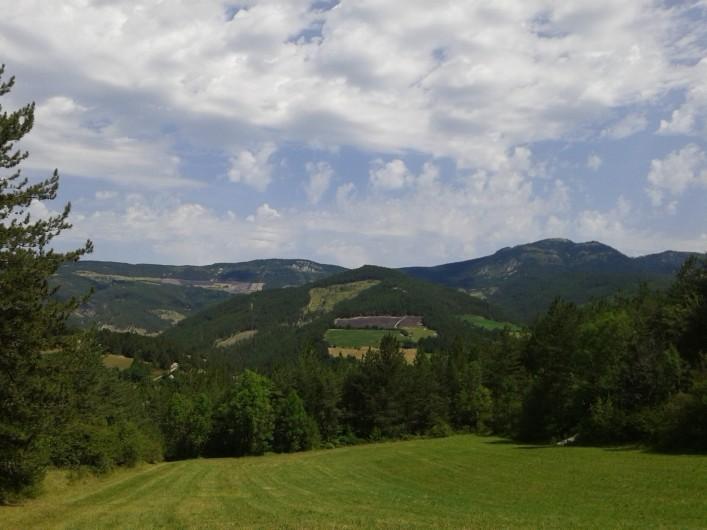 Location de vacances - Gîte à Valdrôme - Les champs de lavande