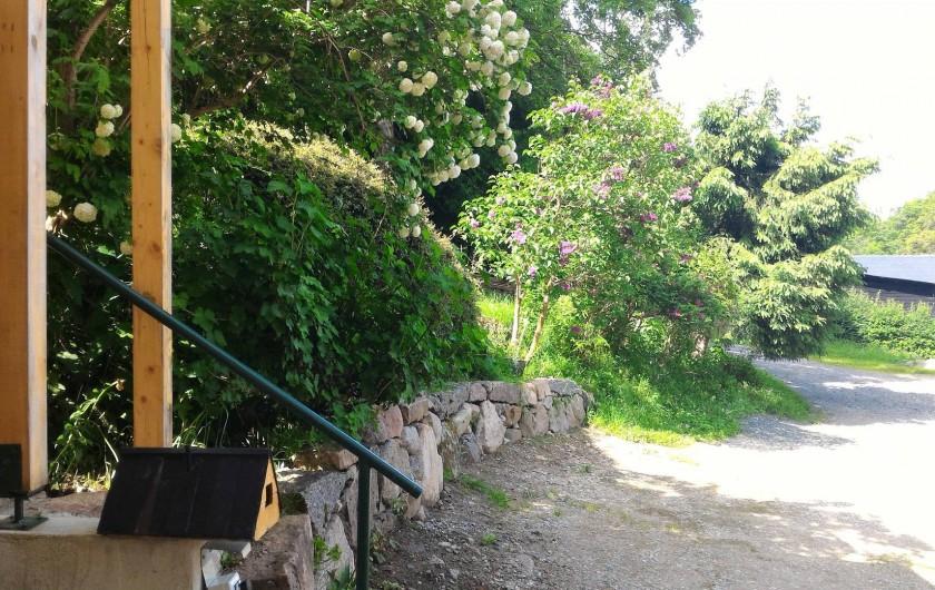 Location de vacances - Gîte à Orbey - Vu de la chambre .