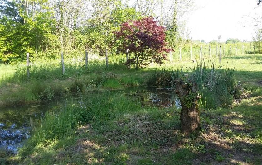 Location de vacances - Gîte à Louhans - Pond