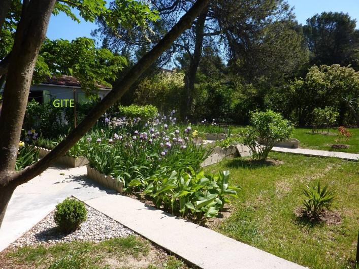 Location de vacances - Gîte à Boisset-et-Gaujac - Environnement nature